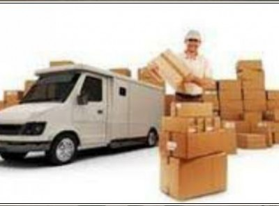 Domestic International Courier Services
