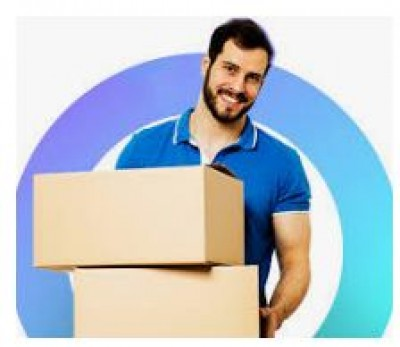 Delhi International Courier Cargo Services
