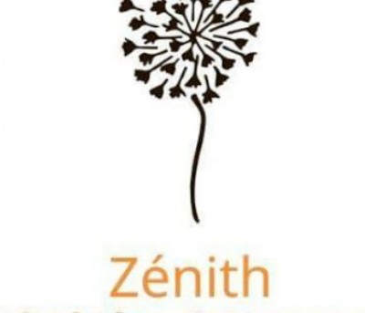 Zenith-School of Foreign languages